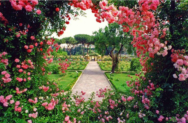 حديقة الورود في برن