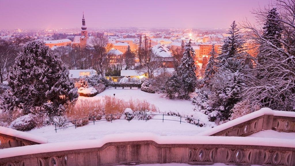 فيينا - يناير