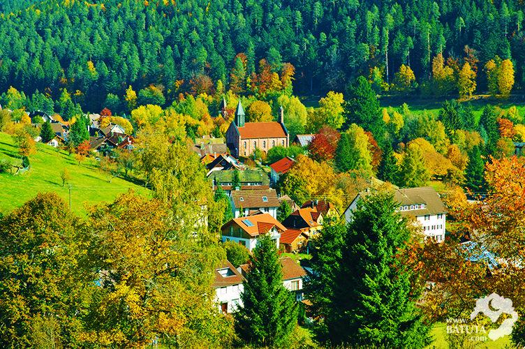 الغابة السوداء في المانيا