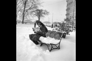 ثلوج الشتاء